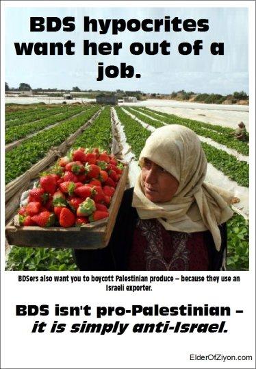 BDS hypocrisy
