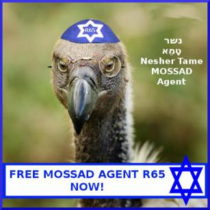 Zionist spy vulture nabbed