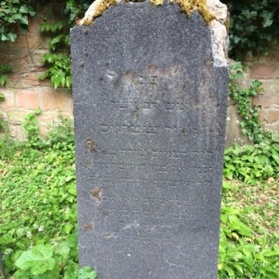 Frankfurt David Strauss grave