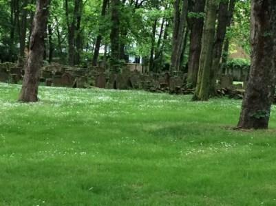 Frankfurt Jewish cemetery gravestones