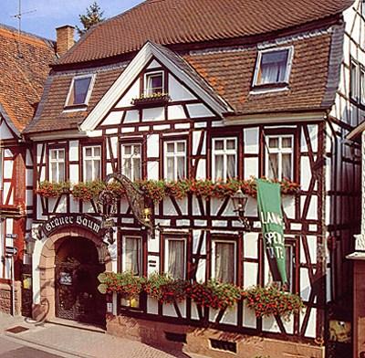 Michelstadt Zum Gruenen Baum