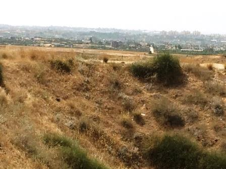 View of Gaza from Kibbutz Nir Am