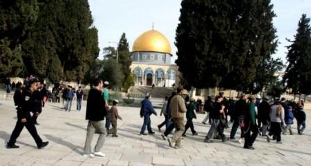 http://elderofziyon.blogspot.com/2015/07/gangs-of-jewish-settlers-resumed.html